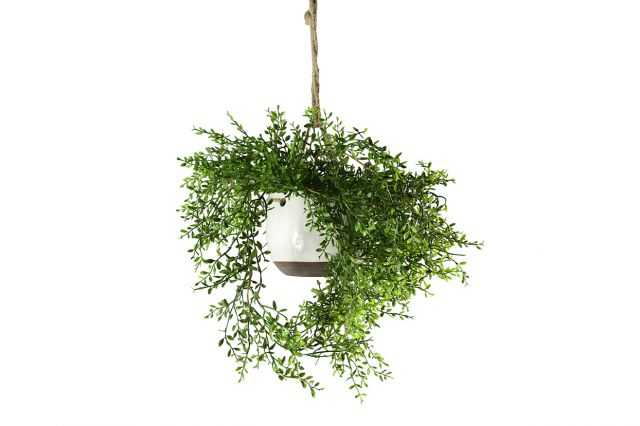 Artificial Hanging Lemon Beauty Vine in Pot